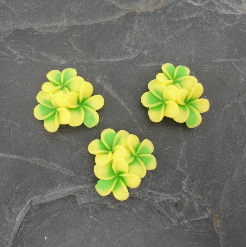 Kabošon kytičky 24x24x10mm - žluto-zelený
