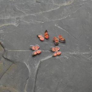 - Kabošon motýlek 9x11mm - oranžový